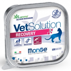 Pâtée chat RECOVERY barquettes 100 grs
